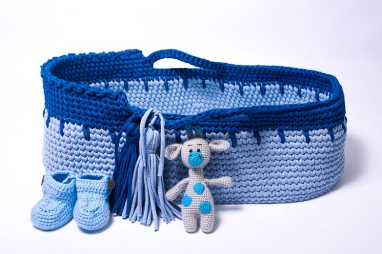 Picture of Moses basket